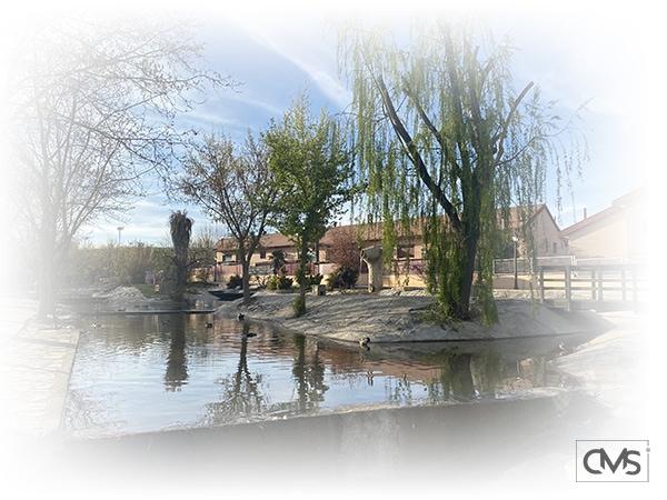 Vista del lago de Griñón